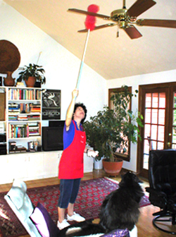 atlanta maid service picture of cleaning ceiling fans