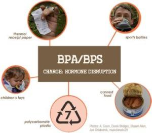 Sources of BPA