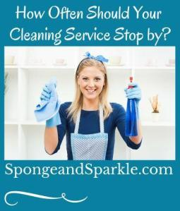 Sponge & Sparkle - Atlanta's Award Winning Cleaning Experts