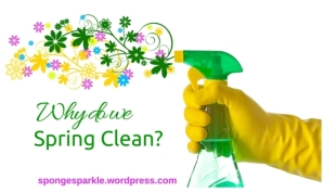 why-do-we-spring-clean